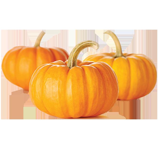 calabaza-pumpkins