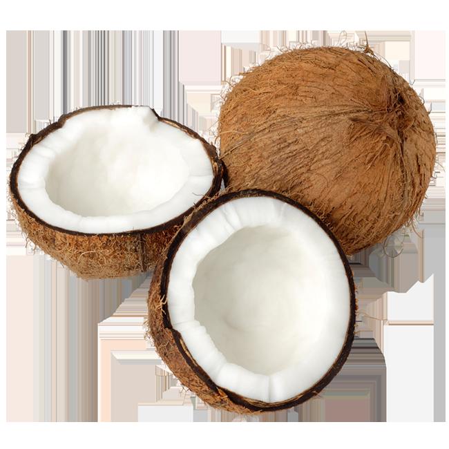 coco-coconuts