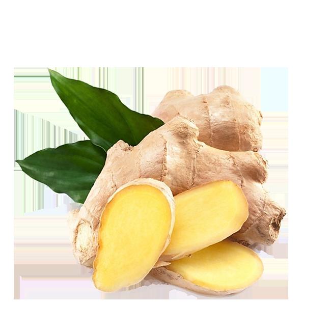 jengibre-ginger