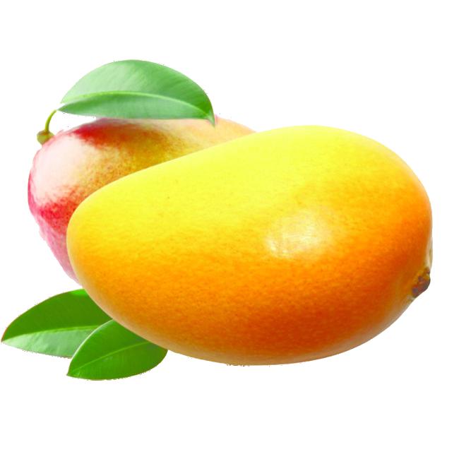 mango-mangoe
