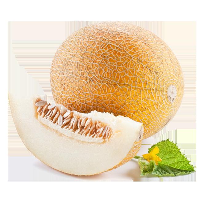 melon-melons